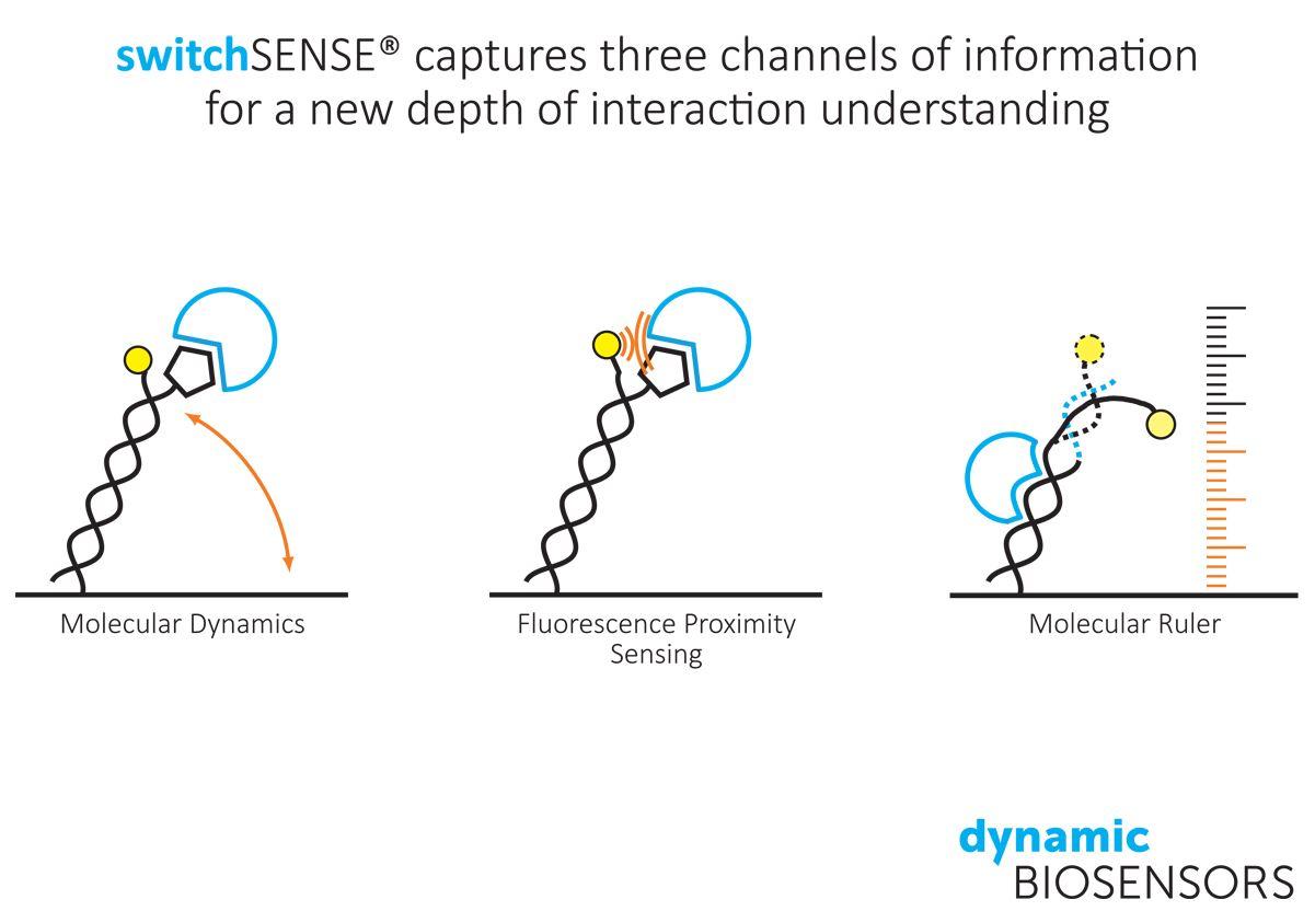 switchSENSE captures three channels
