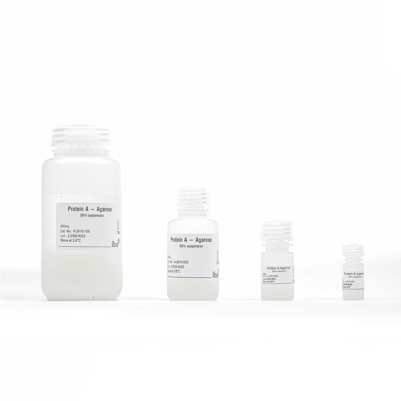 Protein A Agarose resin