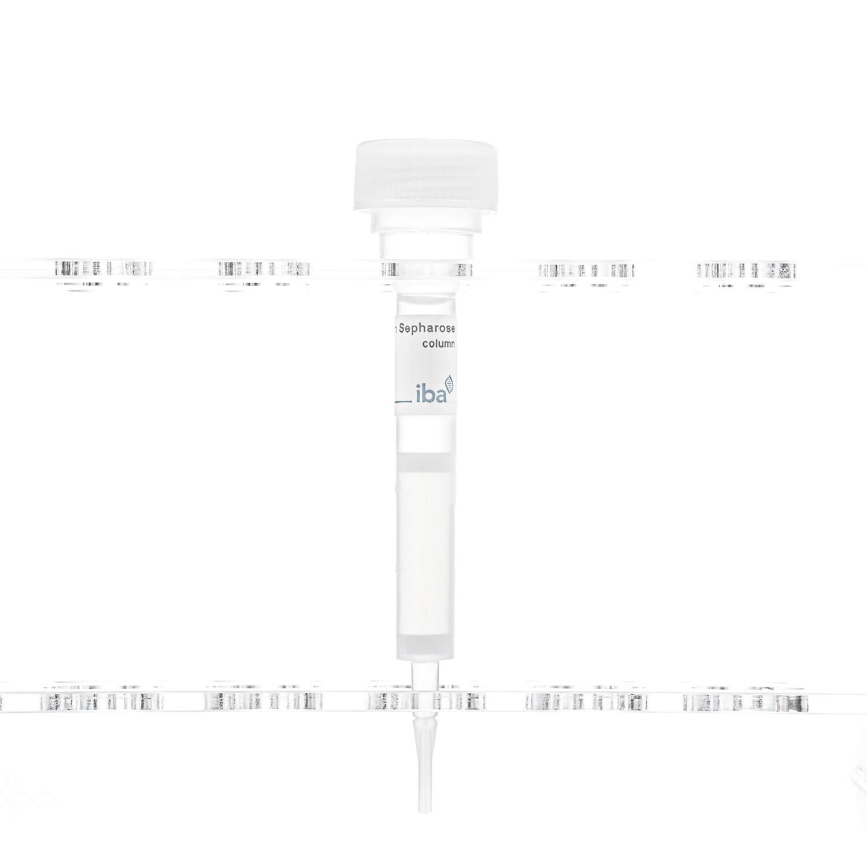 Strep-Tactin® Sepharose® column