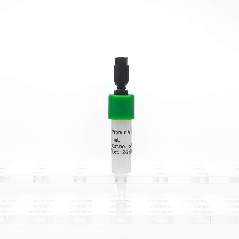 Protein A Agarose cartridge