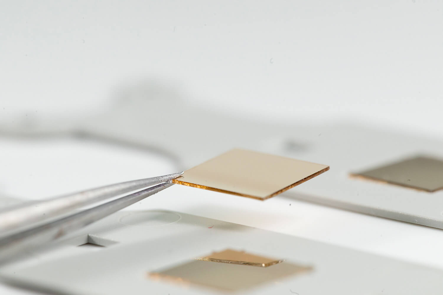 SPR sensor chip with gold layer